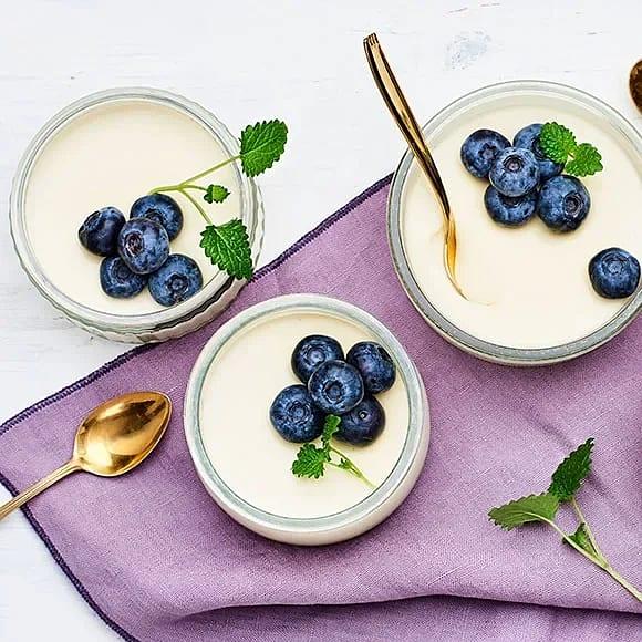 Pannacotta med yoghurt och blåbär