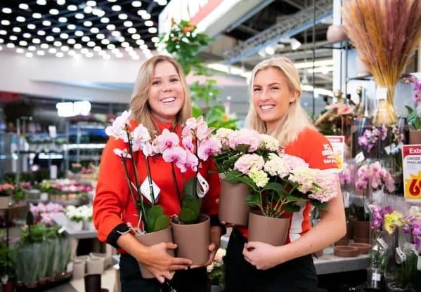 billiga blommor uppsala