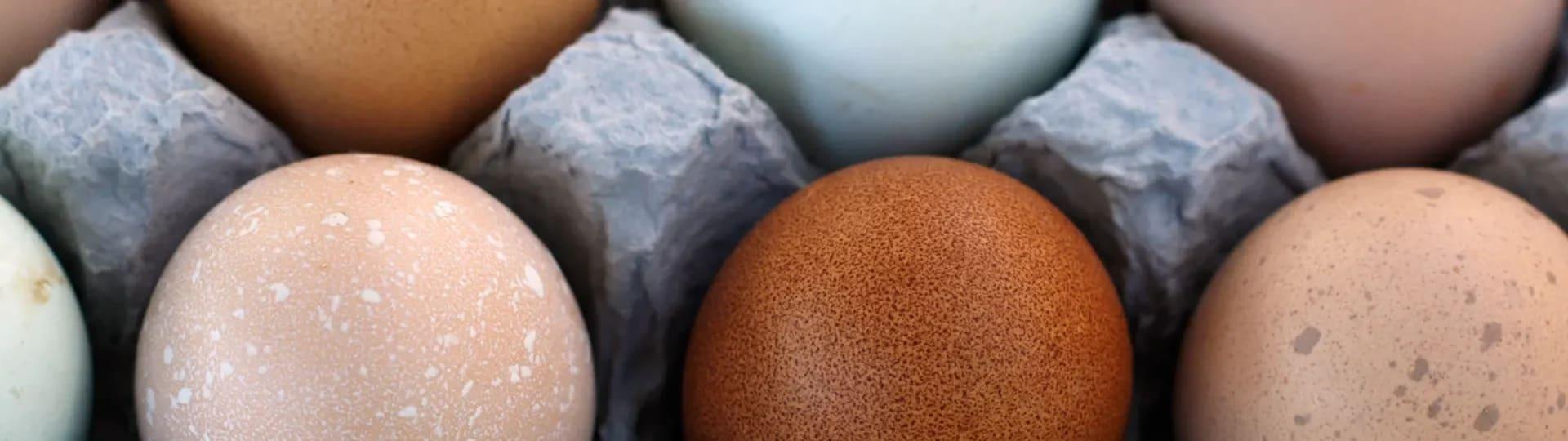 hur länge håller kokta ägg