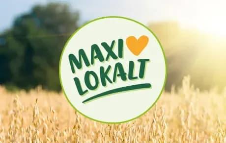 Start   Maxi ICA Stormarknad Häggvik