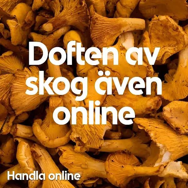 Handla online