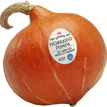 Hokkiadopumpa ICA ca 1kg
