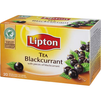 Blackcurrant te 20-p Lipton