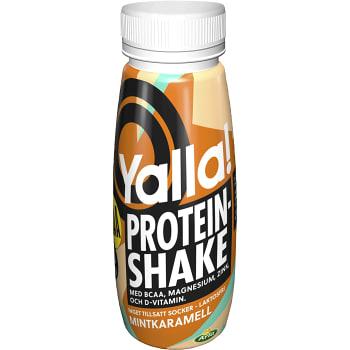 Proteinshake BCAA Mintkaramell Laktosfri 250ml Arla