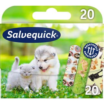 Plåster Animal Planet 20st Salvequick
