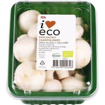 Champinjoner Ekologiska 250g KRAV Klass 1 ICA i love eco
