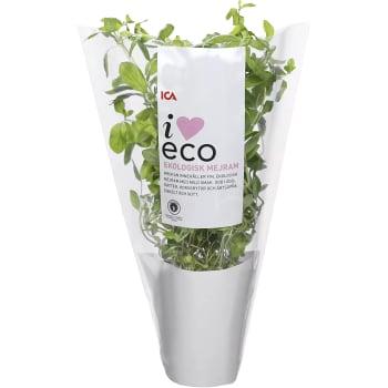 Mejram Ekologisk 1-p KRAV Klass 1 ICA I love eco