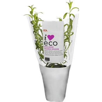 Fransk dragon Ekologisk 1-p KRAV Klass 1 ICA I love eco