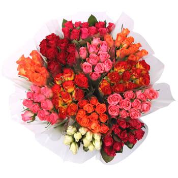 Rosor Blandade färger 10-p 40 cm Fairtrade ICA