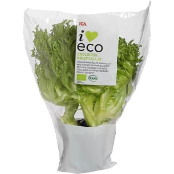 Krispsallat Ekologisk KRAV Klass 1 ICA I love eco