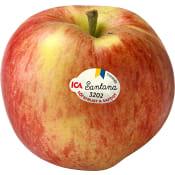 Äpple Santana ca 190g ICA
