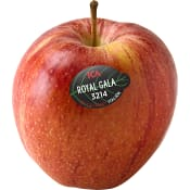 Äpple Royal Gala ICA ca 220g