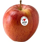 Äpple Royal Gala ICA Eko ca 160g