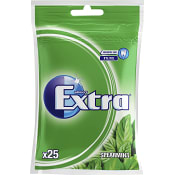 Tuggummi Spearmint Sockerfri 25-p 35g Extra