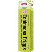 Friggs Echinacea Brustablett 20-p