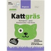Kattgräs 100g Dogman