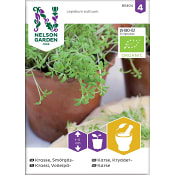 Krasse, Smörgås-, Organic Nelson Garden