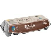 Ägg Frigående Bruna 12-p Lantägg