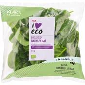 Babyspenat Sköljd Ekologisk 65g  ICA I love eco