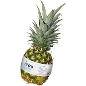 Ananas Ekologisk ICA I love eco
