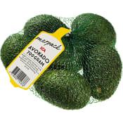Avokado i nät 700g Klass 1 ICA