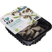 Ostronskivling Ekologisk 150g Klass 1 ICA I love eco