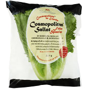 Sallat Cosmoplitan 225g Klass 1 ICA Selection