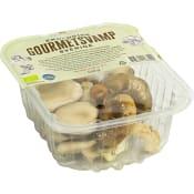 Gourmetsvamp Mix Ekologisk 150g ICA I love eco