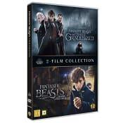 Box Fantastiska Vidunder Dvd