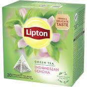 Grönt Pyramidte 20-p Lipton