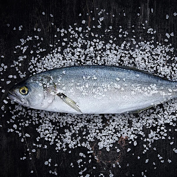 Färsk fisk